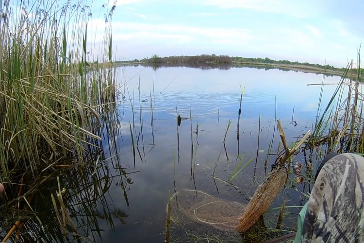 Рыбалка на поплавок весной. Активный клёв плотвы на мастырку!